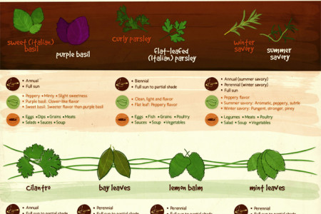 Herb Your Enthusiasm Infographic