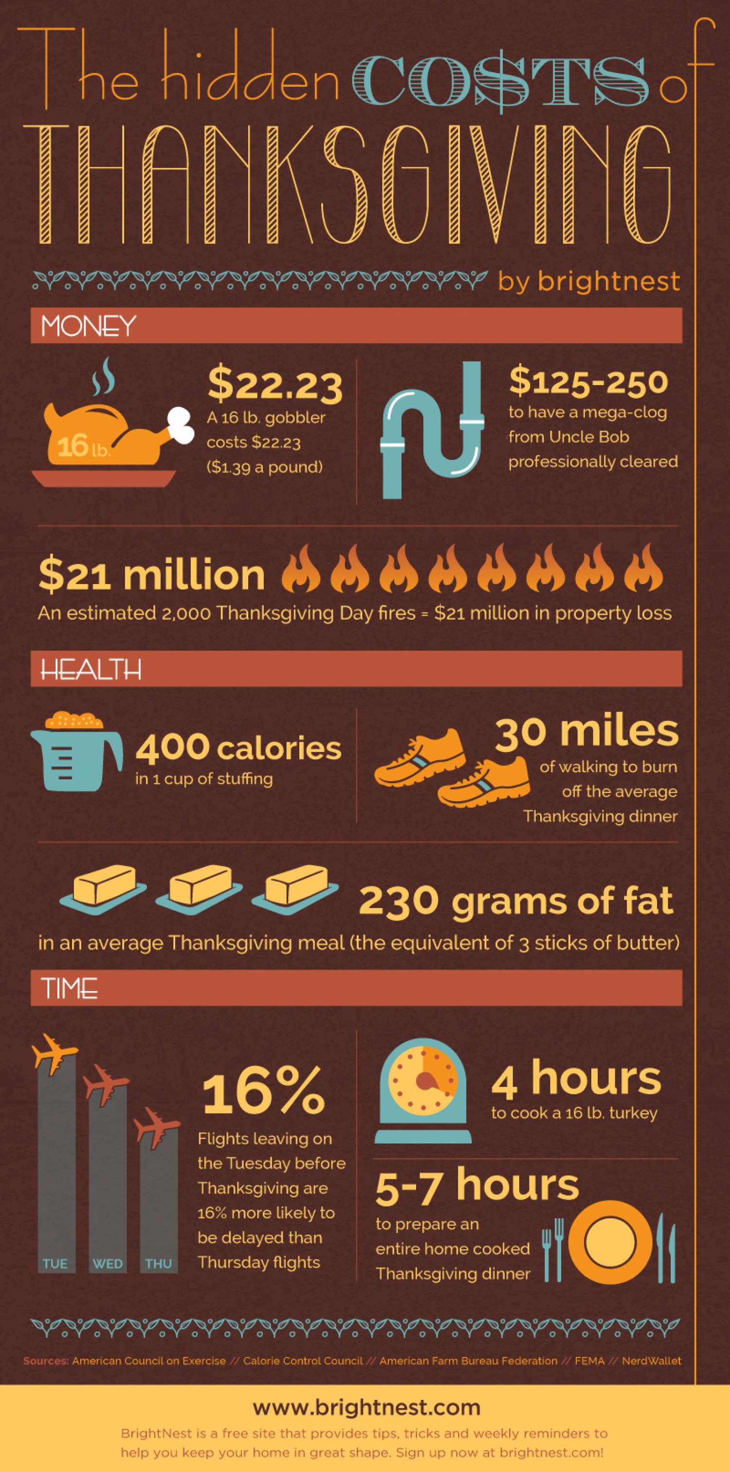 Hidden Costs of Thanksgiving Infographic