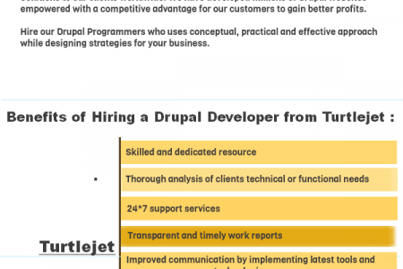 Hire a Drupal Programmer/ Developer India Infographic