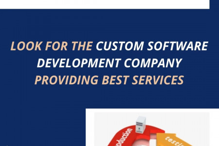 Hire Custom Software Development Company in Delhi NCR to Set-up Your Business Infographic