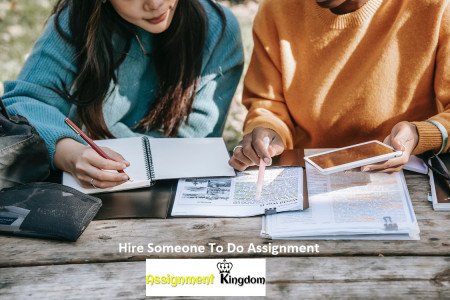 Hire Someone To Do Assignment Infographic