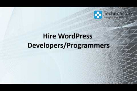 Hire WordPress Developer Infographic