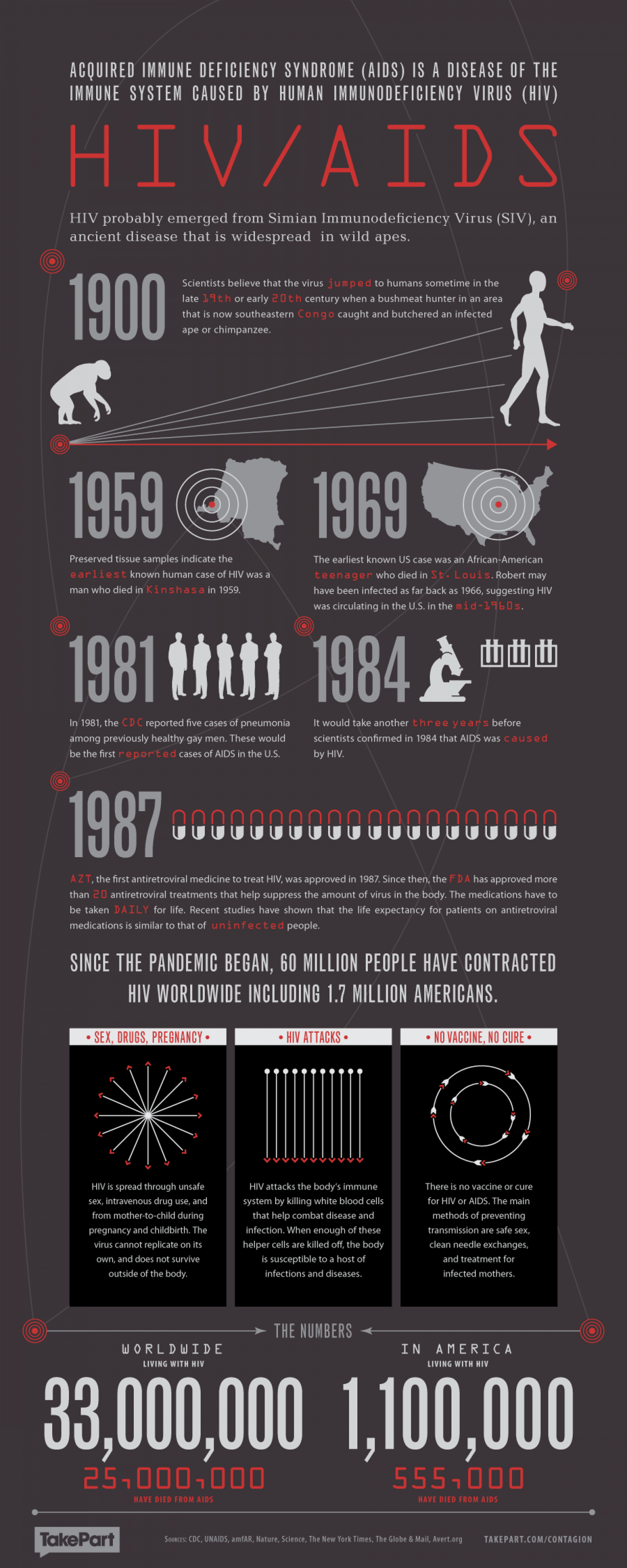 HIV and AIDS Infographic