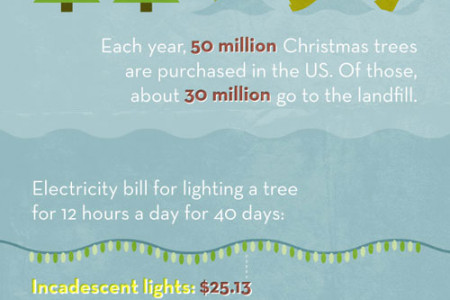 Holiday Waste Infographic
