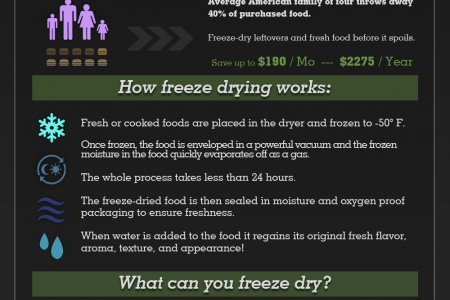 Home Freeze Drying: A New Way to Preserve Food Infographic