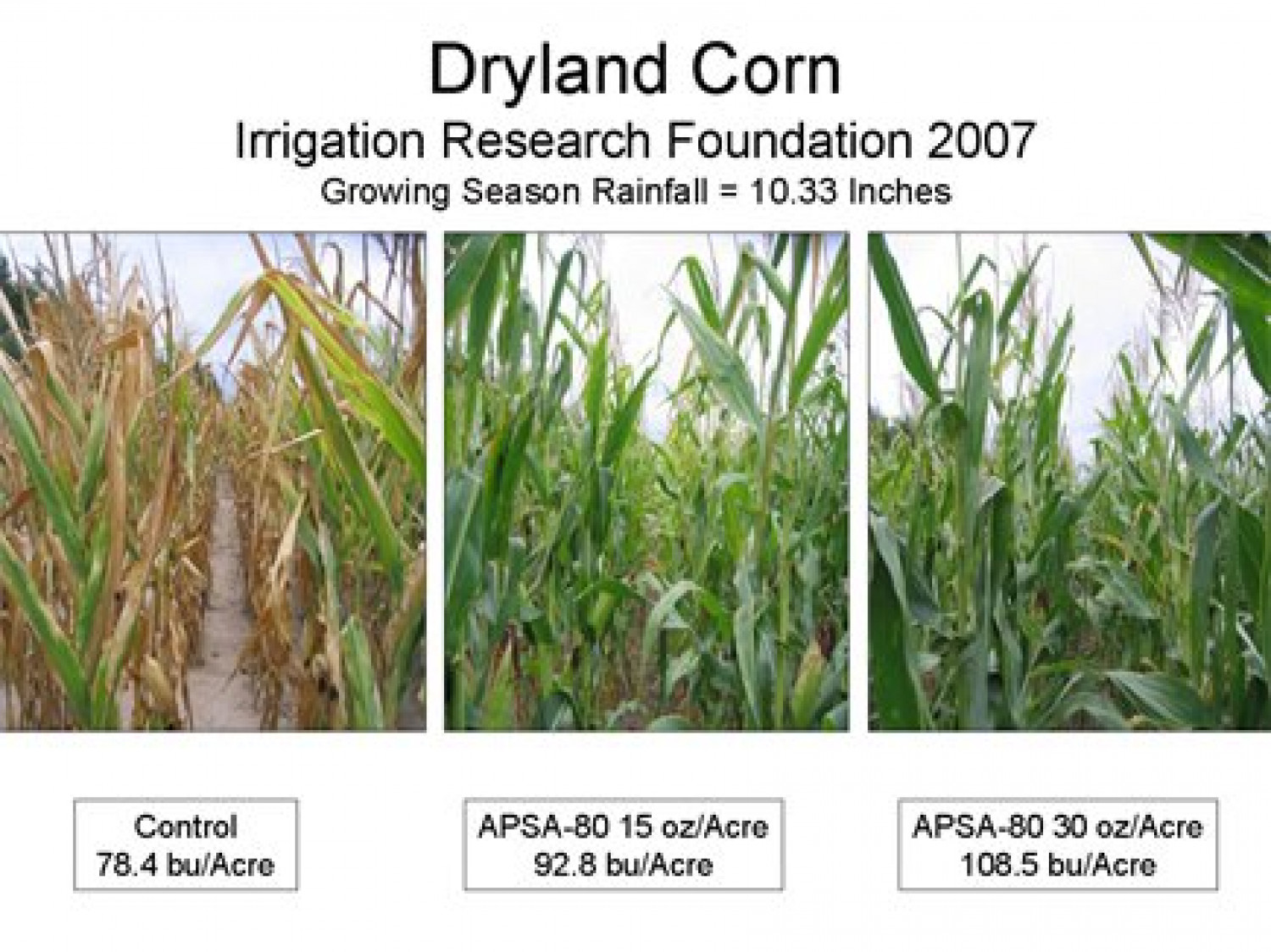 Homeland Farm and Crop Nutrients Supply Co. Infographic