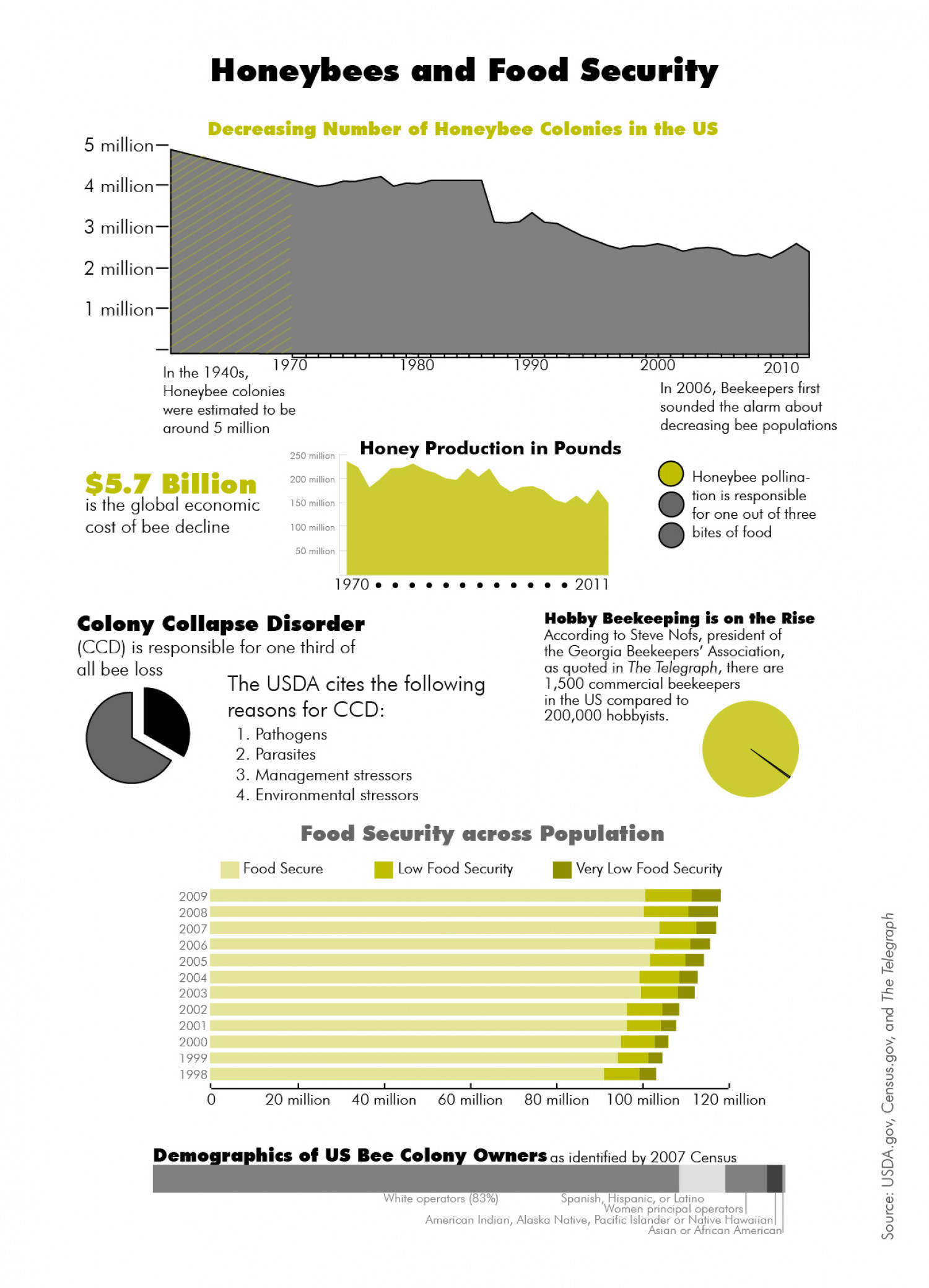 Honeybees and Food Security Infographic