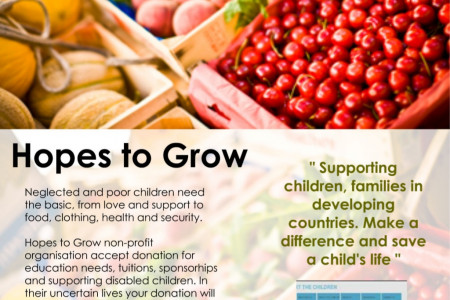 Hopes to Grow Charity - How to Donate to Charity ? Infographic