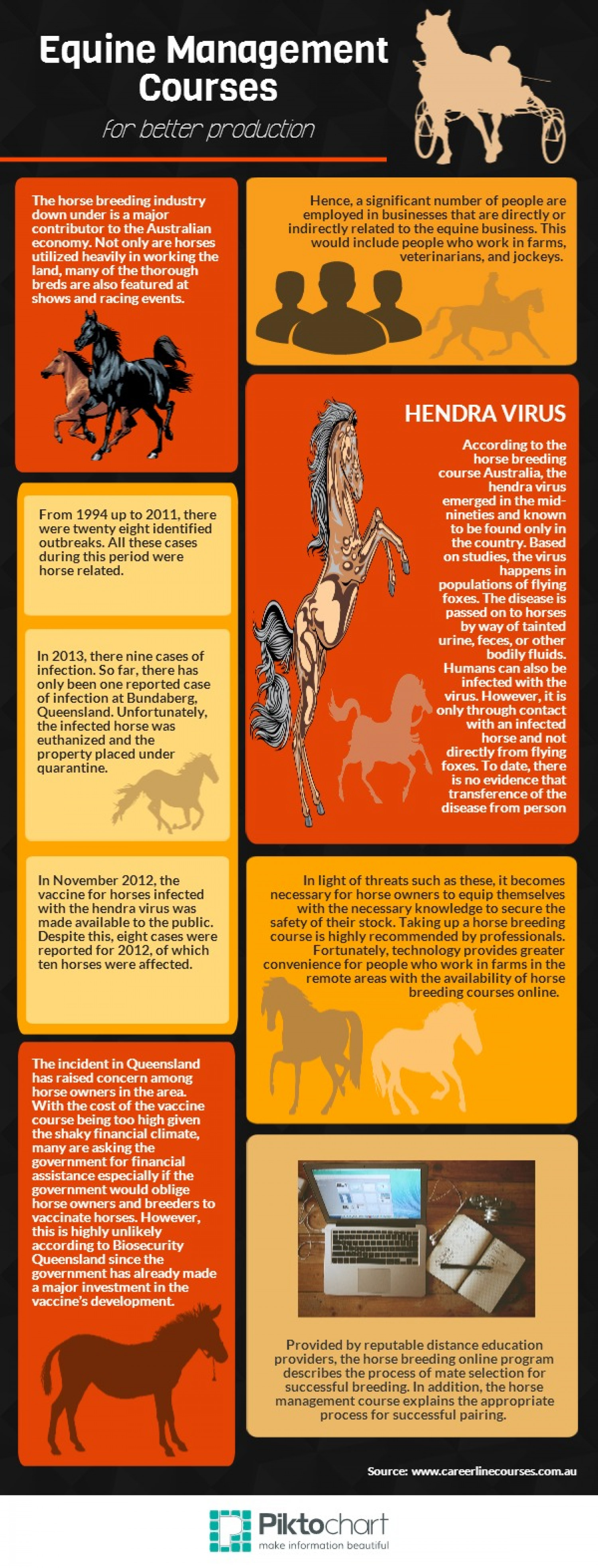 Horse Breeding in Australia Infographic