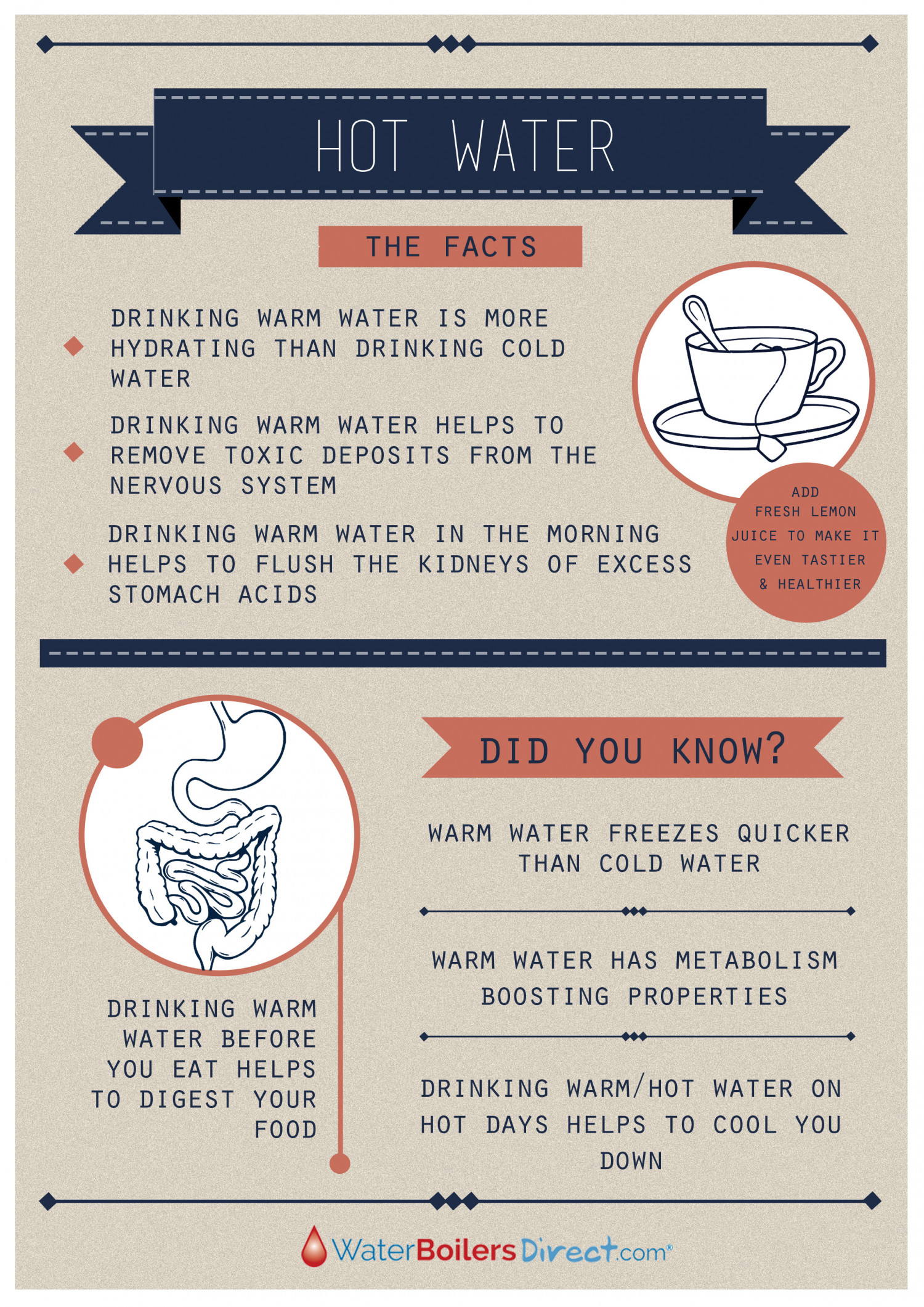 Hot Water Facts Infographic