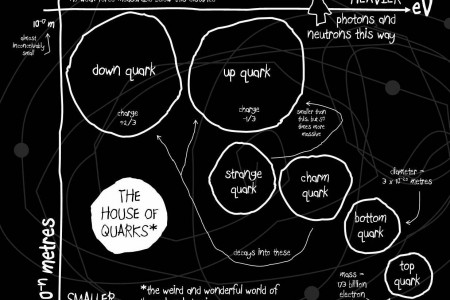 House of Quarks Infographic