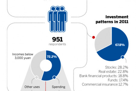 Household consumption in 2011 Infographic