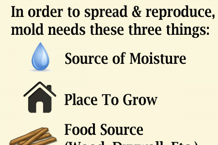 Household Mold - What You Need to Know Infographic