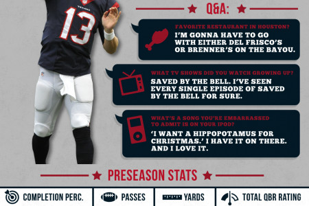 Houston Texans Preseason Game 4 Infographic