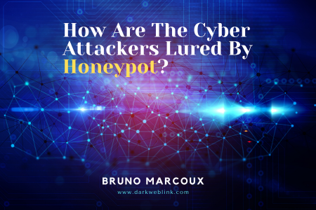 How Are The Cyberattackers Massively Lured By Honeypot? Infographic