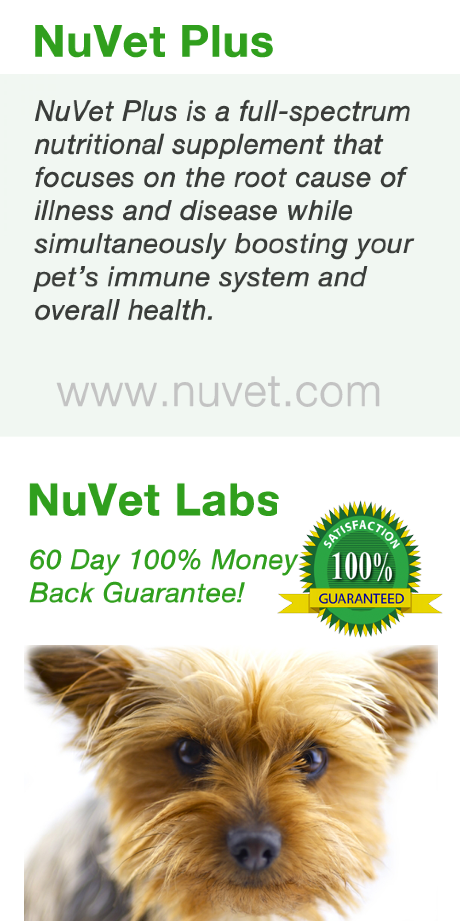How Can NuVet Plus Help My Dog with Diabetes? Infographic
