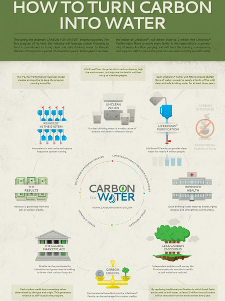How Carbon For Water™ Works Infographic