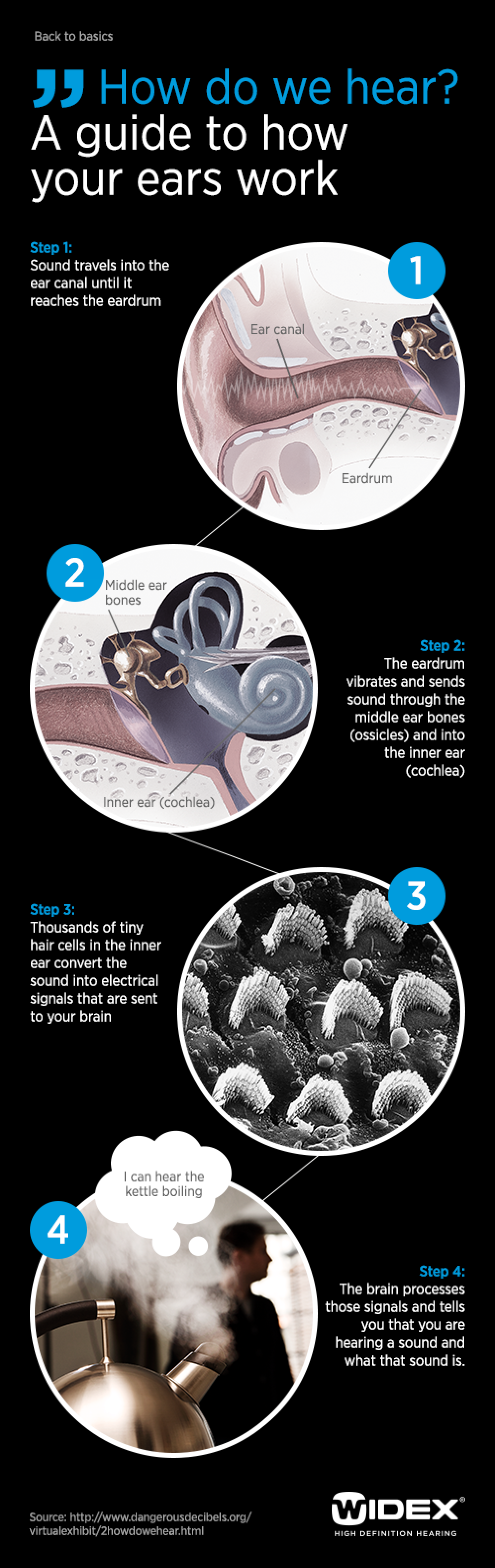 How do we Hear? Infographic
