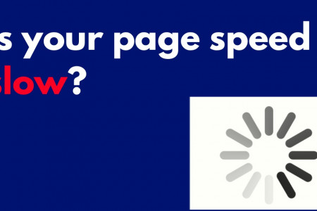 How does Slow Page Loading Speed Affects Business? Infographic