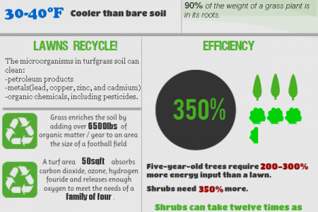 How Green is the Grass Infographic