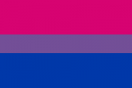 How I Found Out I Was Bisexual Infographic