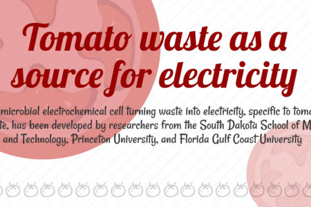 How many tomatoes are needed to fuel Disneyland? Infographic