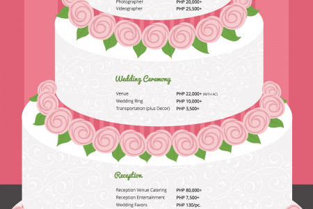 How Much Does a Wedding Really Cost? Infographic