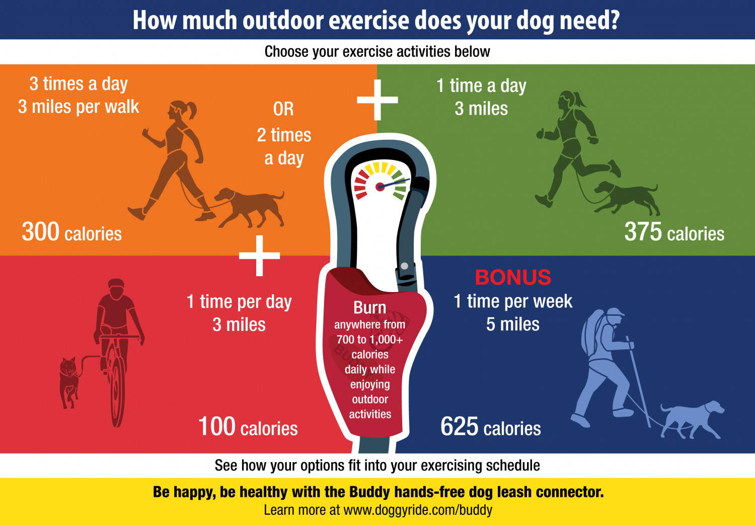 how much outdoor exercise does your dog need visual ly