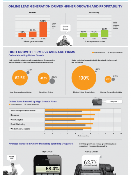 How Online Marketing Techniques Grow Your Firm Infographic