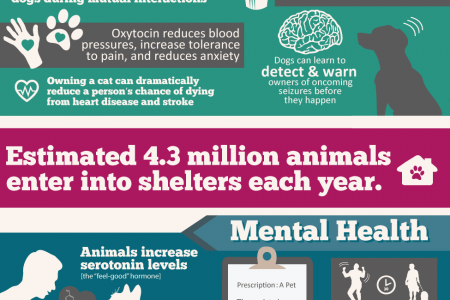 How Saving a Pet Might Just Save Your Life Infographic