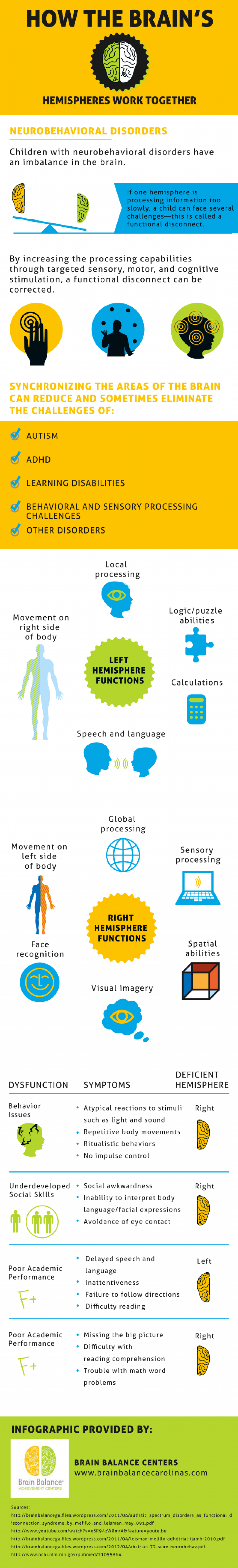 How The Brain's Hemispheres Work Together Infographic