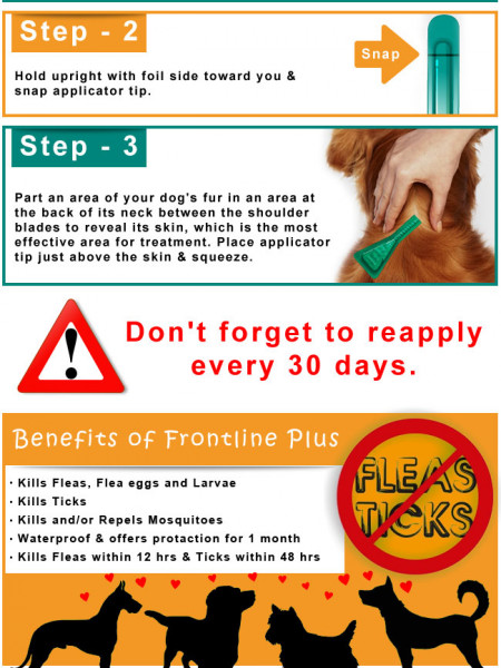 How to Apply Frontline Plus on Dogs Infographic
