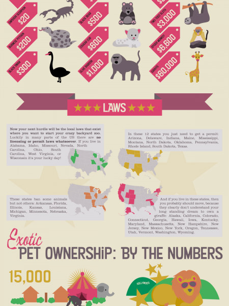 How to Become a Backyard Zookeeper Infographic