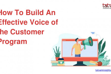 How to Build an Effective Voice of the Customer Program Infographic