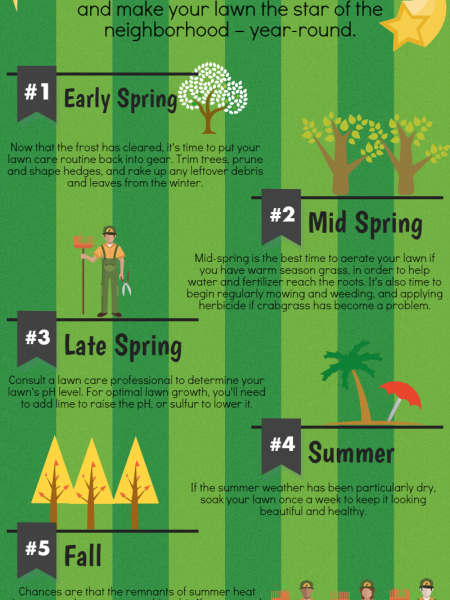 How to Care for Your Lawn, for Every Time of Year Infographic