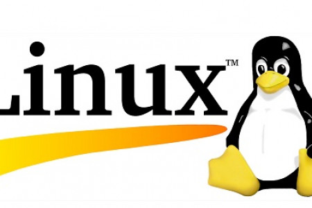 How to Check the Activated GPU on Linux Infographic