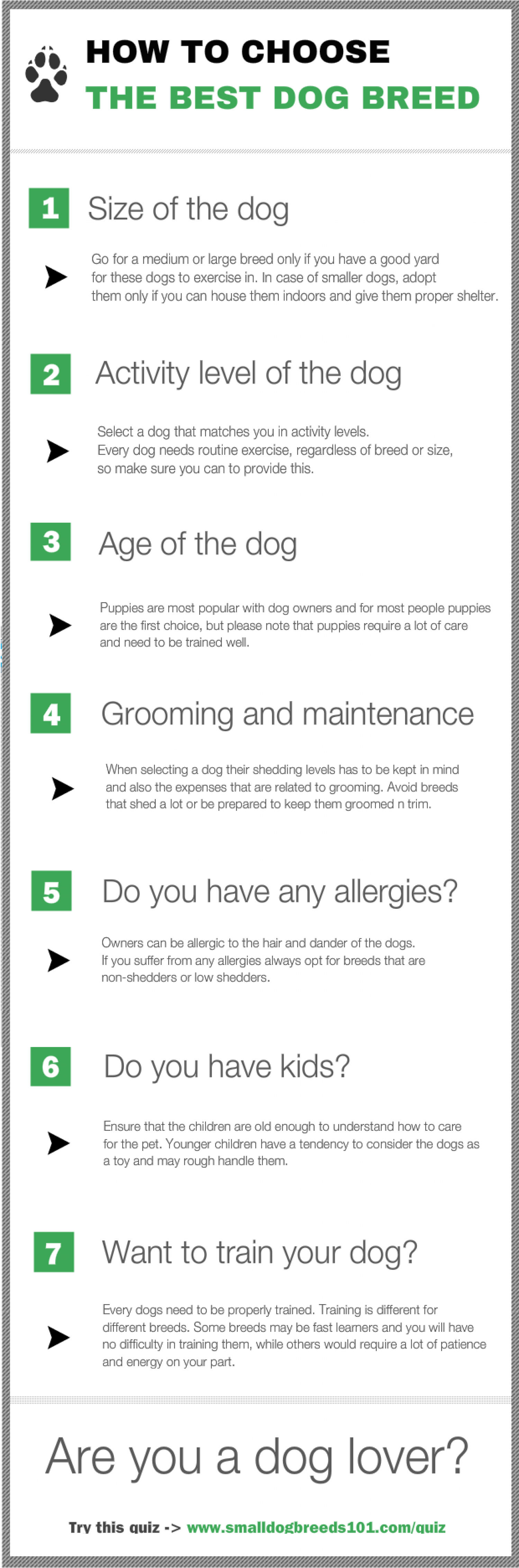 How to Choose a Dog? Infographic