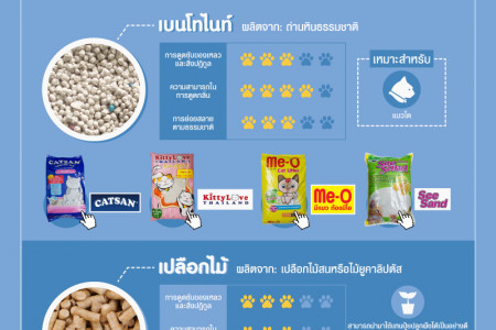 How to choose cat litter Infographic