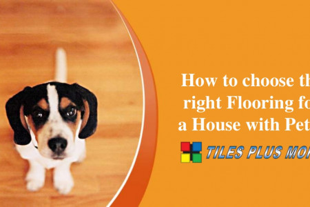 How to choose the right Flooring for a House with Pets? Infographic