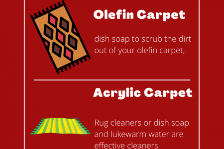 How to Clean These 5 Types Of Carpets Infographic