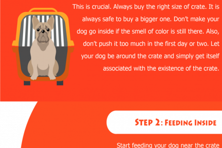How to Crate Train your Dog Infographic
