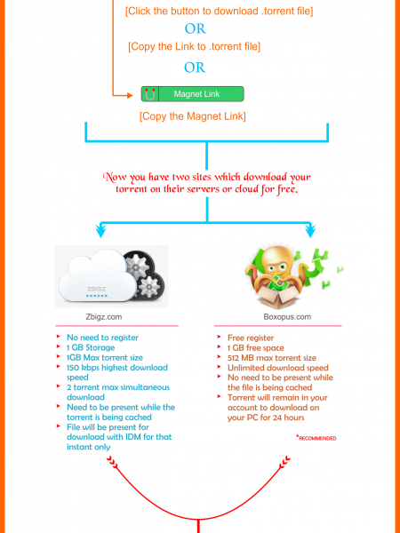 How to Download Torrent files with Internet Download Manager Infographic