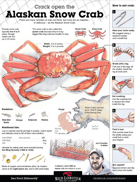 How to Eat Crab Infographic