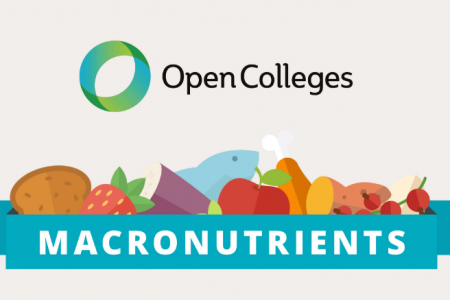 How To Eat The Right Ratio Of Macronutrients Infographic