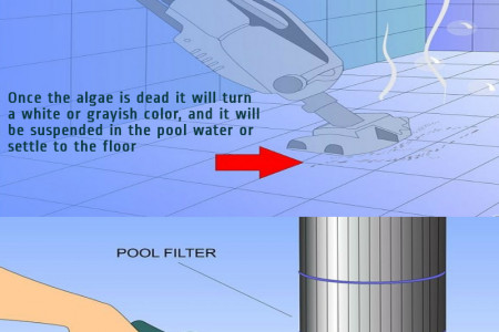 How to Eliminate and Prevent Green Algae in a Swimming Pool Infographic