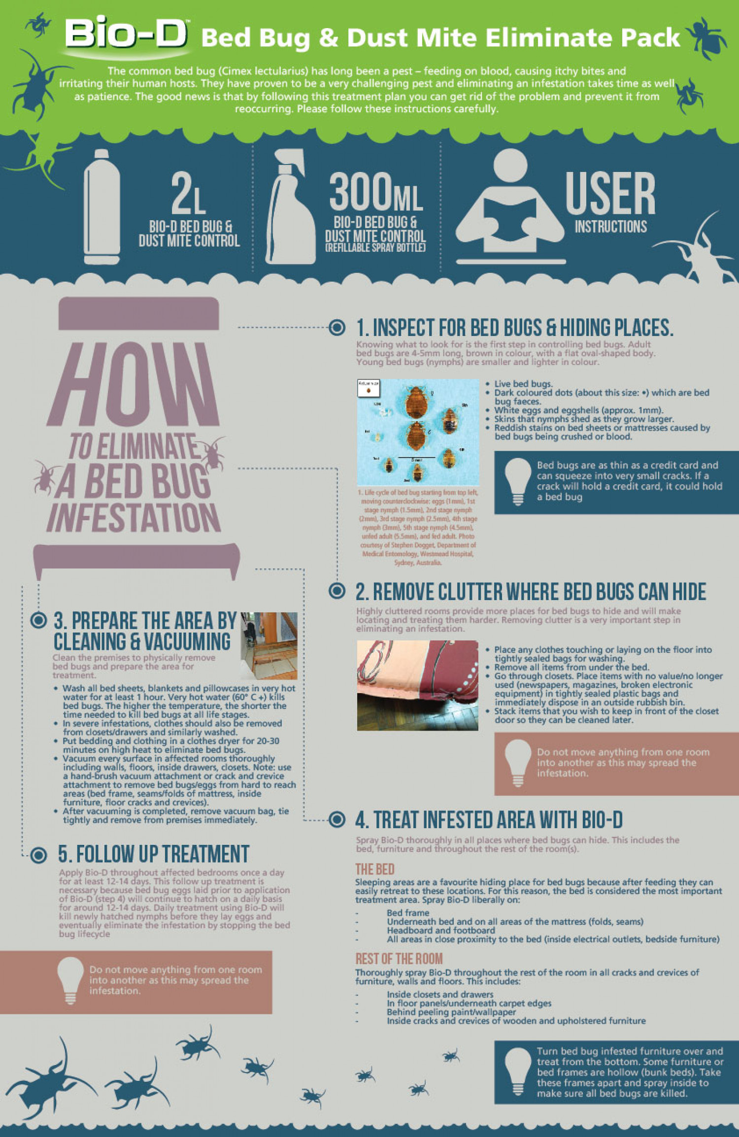How to eliminate Bed Bug Infographic
