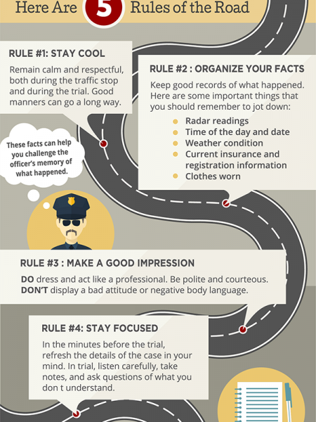 How to Fight a Traffic Ticket Infographic