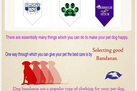 How to find ideal bandanas fro your puppy pet Infographic