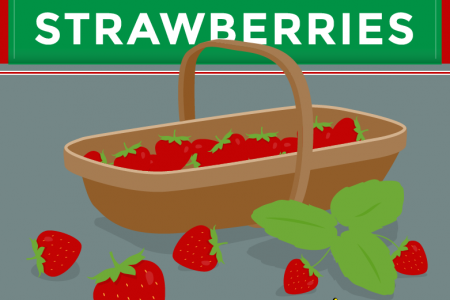 How to Grow Strawberries Infographic
