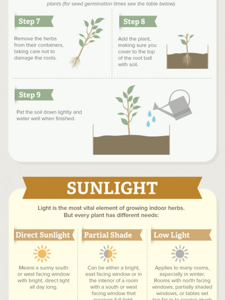 How To Grow Your Own Indoor Herb Garden Infographic